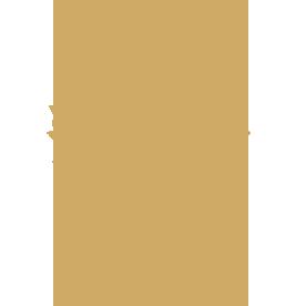 contenzioso dell'anno 2019